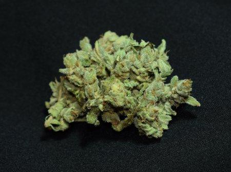 Blueberry Weed 1 Gramm 1